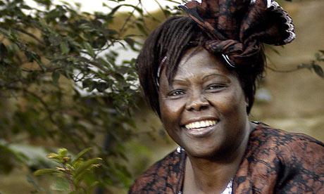 Wangari Maathai Obituary (1941-2011)