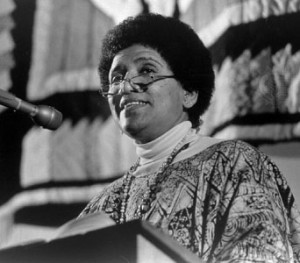 audre lorde power essays Audre lorde: we must learn to use our power on apartheid, police brutality, and internationalism.