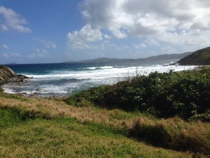 St. Croix, U.S.V.I. copyright: Aishah Shahidah Simmons