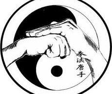 yin_yang_kempo_hands
